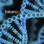Talania | Chat that works | Chatbot Solutions